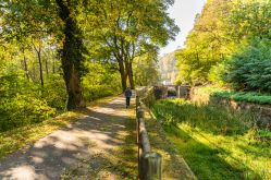 OT Pays de Phalsbourg - Patrice Bucher